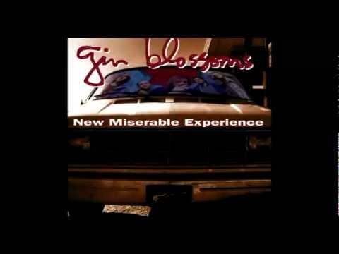 Gin Blossoms Booking Agency | Gin Blossoms Event Booking